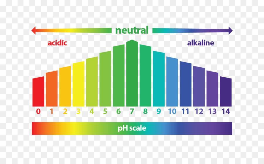 Acidità: come prevenirla e normalizzare il pH