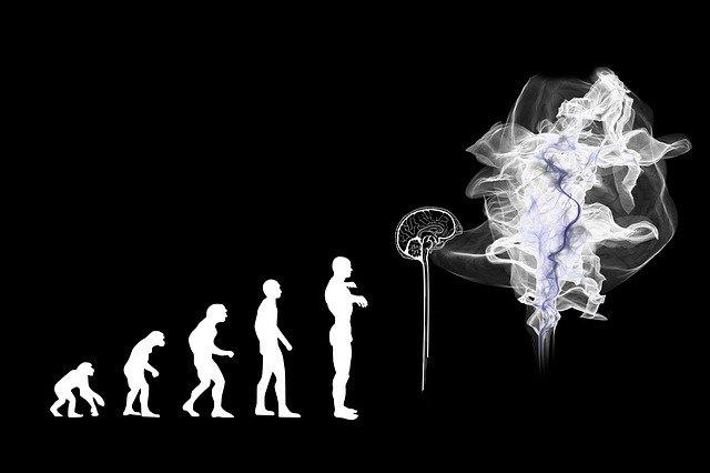 Bios e Psiche: il patrimonio genetico